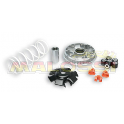 MALOSSI - Variateur Mutlivar Compatible Honda Sh/Forza 125